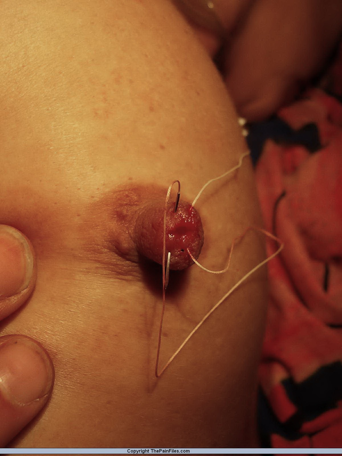 Speaking, Free pussy needle torture bdsm