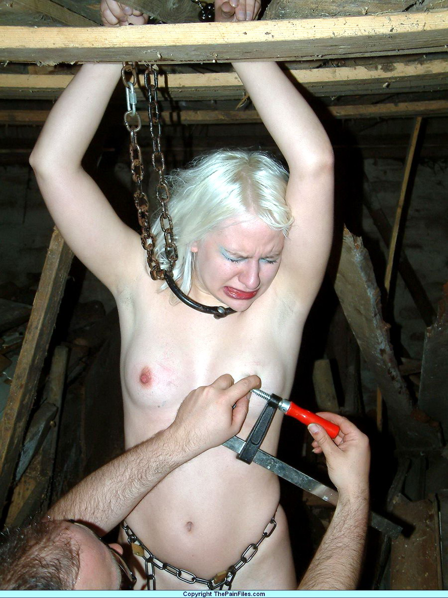 Free tit torture clips